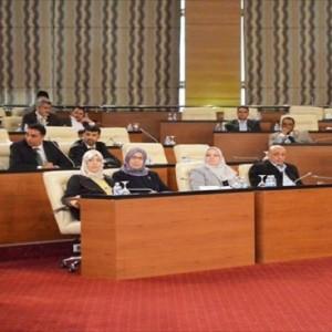 لجنة فبراير مهمتها النظر في تعديل الإعلان الدستوري