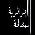 نوردين خبابه ينبش في المنطلق الخاطئ لبناء الجزائر