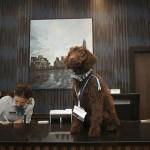 بالصور: فندق يوظف كلباً لاستقبال الزبائن في لندن