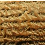 البابليون أول من استخدم مبادئ هندسية مُعقدة