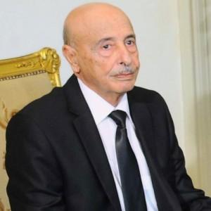 عقيلة صالح: سنحاول منح الثقة للحكومة خلال أسابيع
