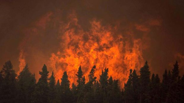 Flames from a wildfire approach trees on the edge of the airport in La Ronge, Saskatchewan