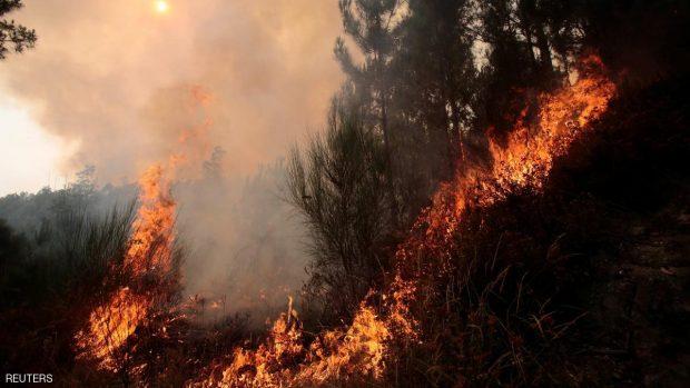تعتقد السلطات أن الحرائق تمت بفعل بشري