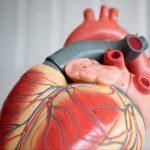 عقار يقلل خطر الإصابة بأمراض القلب
