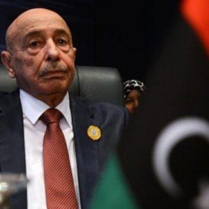 عقيلة صالح يلتقي المبعوث العربي في القبة