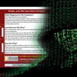 اليوروبول يحذر من استئناف الهجمات الالكترونية غداً