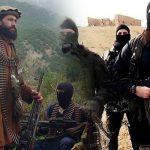 «تنظيم الدولة» يُعلن الحرب على «طالبان»