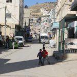 بكتيريا «الشيغيلا» تغزو مخيم الفوار بفلسطين