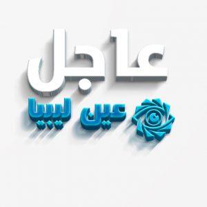 غسان سلامة يعلن أن لجنة الصياغة الموحدة لمجلسي النواب و الدولة ستباشر أعمالها من تونس السبت القادم