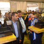 انطلاق فعاليات معرض لـ«طيور الزينة»