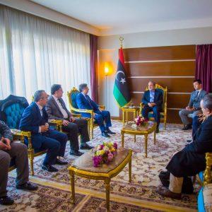 لجنة الشؤون الإقتصادية بالمجلس الأعلى للدولة تجتمع بوفد يُمثل المستشفيات التركية