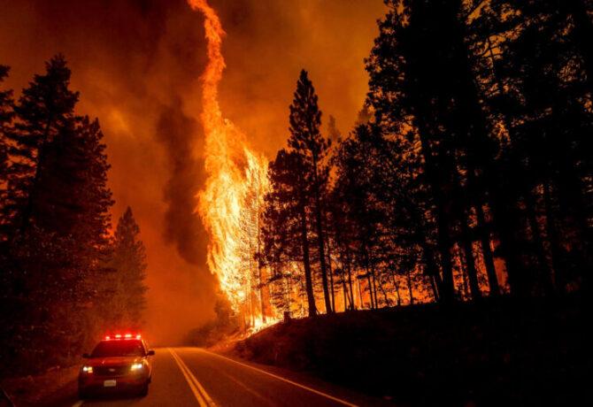 في مقاطعة بلوماس بولاية كاليفورنيا ، قفزت ألسنة اللهب من الأشجار على الطريق السريع 89 شمال جرينفيل في 3 أغسطس 2021