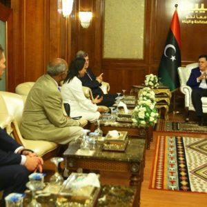 رئيس المجلس الرئاسي يجتمع مع الفريق الطبي الأمريكي لزراعة الأعضاء