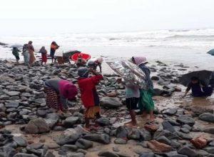 الهند.. البحر «يقذف» ذهبا على شواطئ أوبادا