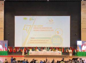 رئيس النيجر يدعو منظمة التعاون الإسلامي للتعاون في حل الأزمة الليبية