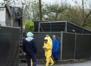 التشيك.. تفشي فيروس إنفلونزا الطيور في «مزرعة دواجن»