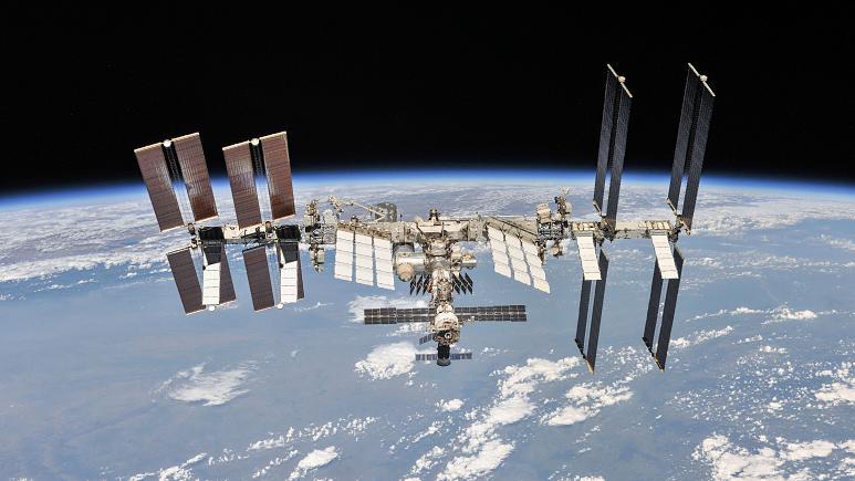 ليس حيوانا ولا نباتا.. زرع كائن بلوب الغريب على متن محطة الفضاء الدولية