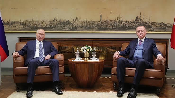 الرئيس التركي يبحث مع نظيره الروسي تطوير العلاقات وقضايا إقليمية