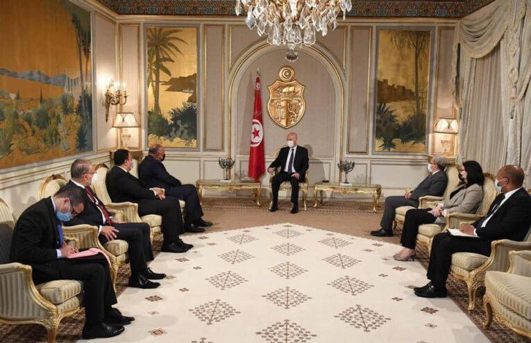 الرئيس التونسي يستقبل وزير الخارجية المصري